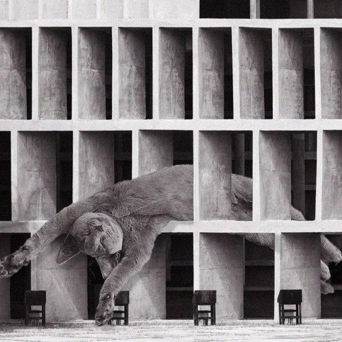 Cats of brutalism Instagram post featuring a large-scale cat photoshopped onto a brutalist structure.
